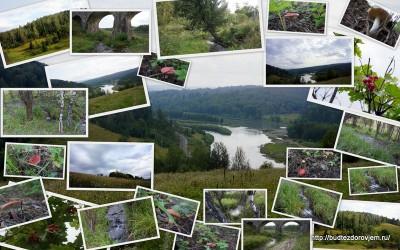 Поездка за Малиновку
