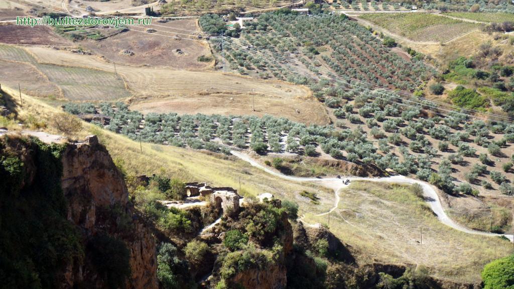 Вид со смотровой площадки на долину