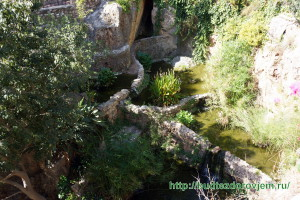 Водоемы-запруды парка