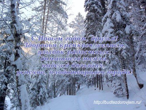 S Novyim godom!_500x375